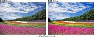 Flowers CMYK vs RGB
